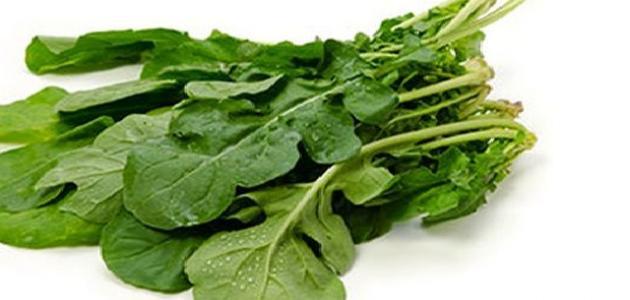 صورة ما هو الجرجير , فوائد الاوراق البخضراء لنا