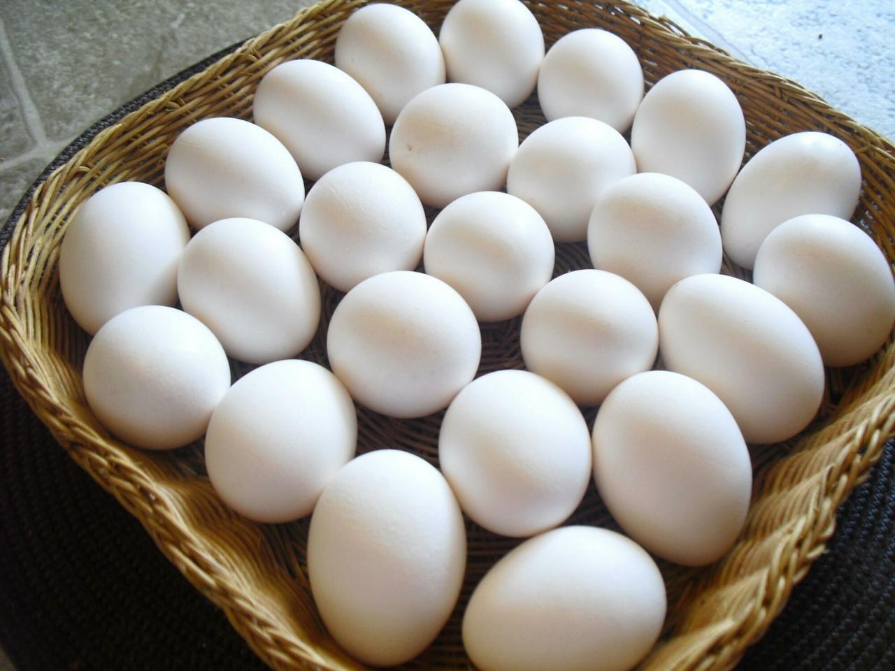 صورة تفسير رؤية البيض في المنام للمتزوجة , معني بعض الاحلام للمتزوجين