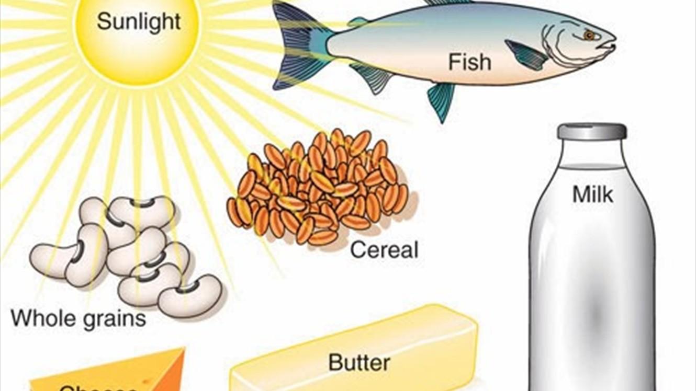 صورة كم يحتاج الجسم من البروتين يوميا , اهمية البروتين للجسم