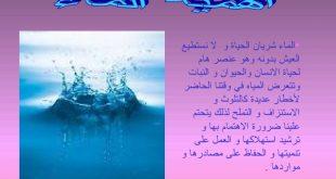 صور اهمية الماء في الحياة وفوائده , ضرورة وجود الماء في الطبيعة