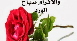 بالصور صور ورود مكتوب عليه , بطاقات زهور عليها كلمات جميلة 4290 15 310x165