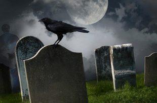 بالصور حكم الخوف من الموت , كيف تتخلصي من وسواس فقد الحياة 4300 1.png 310x205