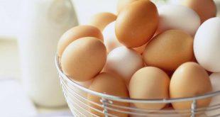 تفسير البيض في المنام , البيض مفيد فى الحقيقة و لاكن هل مفيد فى المنام ايضا