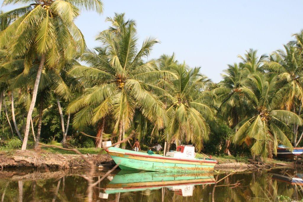 بالصور السياحة في سريلانكا بالصور , اجمل المناطق للتنزهة 5891 11