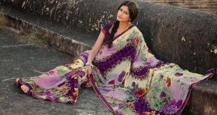 صور صور فساتين هنديه , الفستان الهندى له شهرة عالمية خاصة
