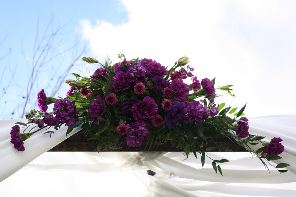 بالصور خلفيات ورد بنفسجي , اجمل صور لزهور بنفسجية 612 7