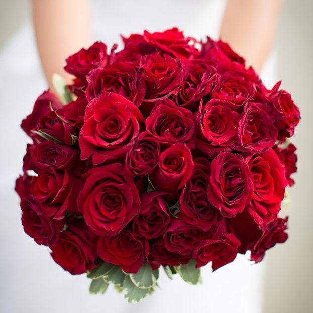 صور ورد احمر رومنسي اجمل الصور للورود الحمراء الرومانسية الحبيب