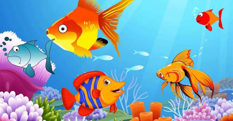 صورة معلومات عن الاسماك للاطفال , معلومات مناسبة للاطفال عن الاسماك