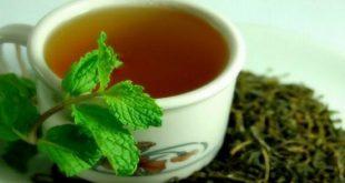 بالصور فوائد الشاي للشعر , اهمية الشاى للحصول على شعر صحى 1261 5 310x165