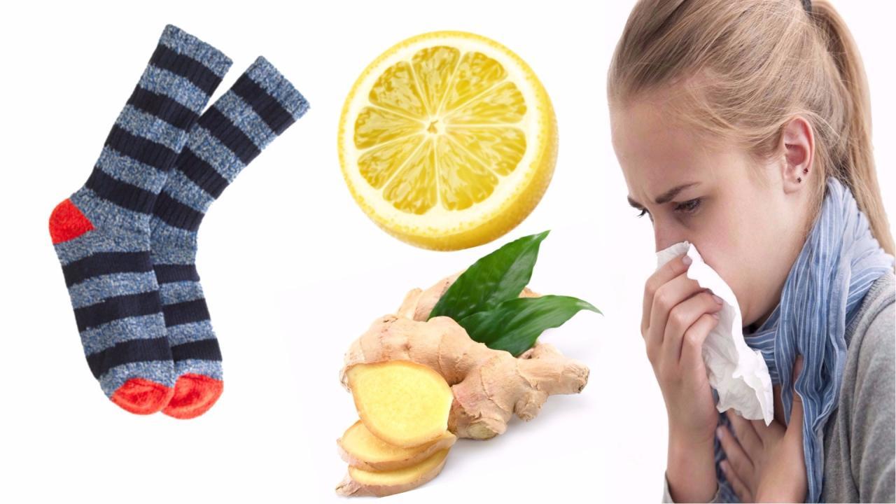 صور علاج نزلات البرد بالاعشاب , افضل وصفات الاعشاب للتخلص من الانفلونزا