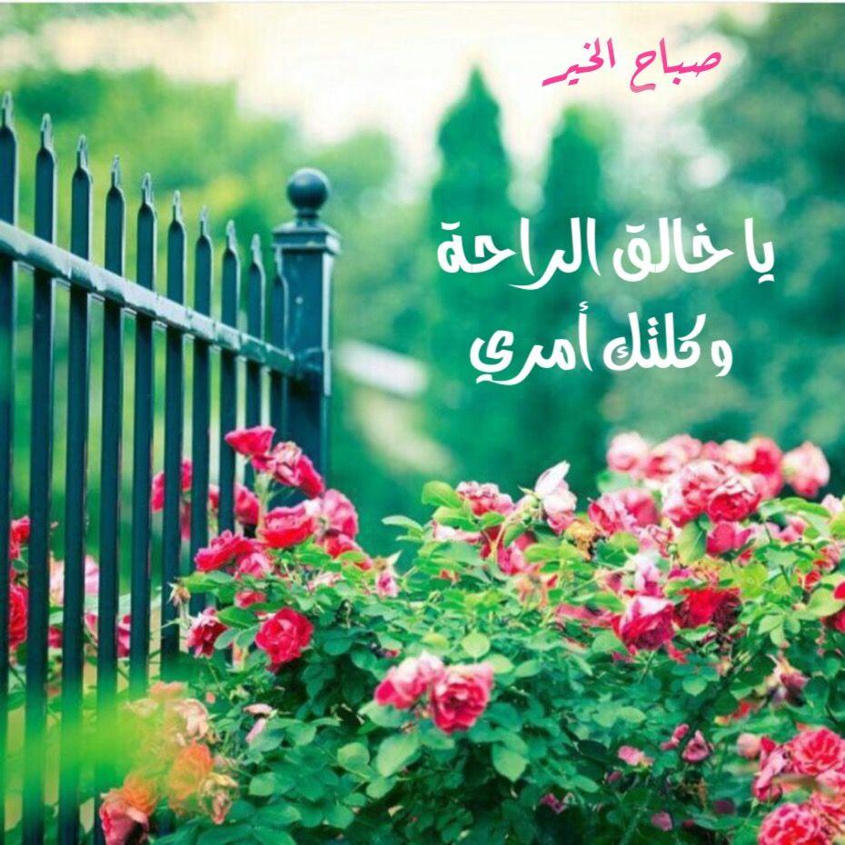 صورة صباح يوم جديد , اجمل رمزيات الصباح