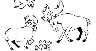 صور صور حيوانات رسم , علمي طفلك كيف يرسم