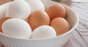 كيف تعرف البيض الفاسد , اسرار معرفة البيض الفاسد