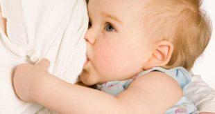 بالصور علاج تشقق الحلمات , طرق حماية الثدى لرضاعة سليمة 5669 3 310x165