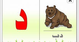بالصور صور حرف الدال , رمزيات حرف الدال 5709 14 310x165