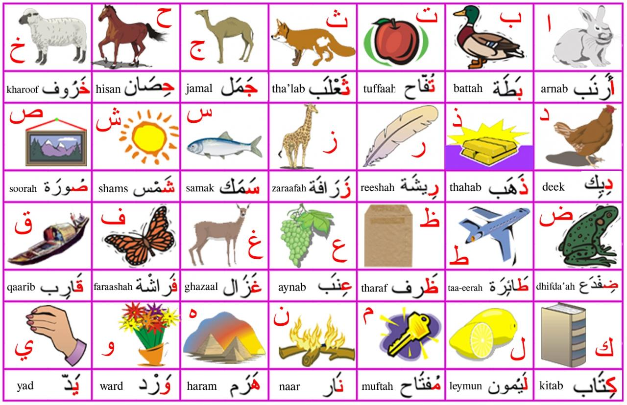 صور الحروف للاطفال بالصور , القراة اسهل وسيلة للتعلم