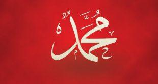 بالصور صور لي اسم محمد , تجد فى محمد اسمى المعانى 5804 10 310x165