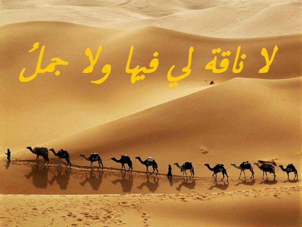 صورة امثال وحكم فيس بوك , تسمية مختلفة لمواقف فى الحياة