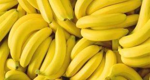 بالصور في المنام موز , تفسير رؤية الموز فى المنام 958 13 310x165