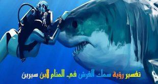 صور حلم سمك القرش , تفسير رؤية سمك القرش فى المنام