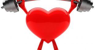 صور كيفية المحافظة على القلب , حافظ على قلبك بالعديد من الطرق