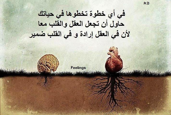 صورة كلام من العقل , ماذا يقول لنا العقل