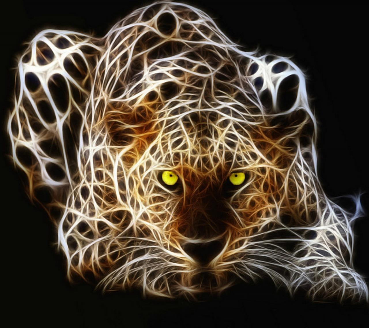 صورة كم حيوان بالصورة , التعرف على الحيونات المفترسه بالصوره