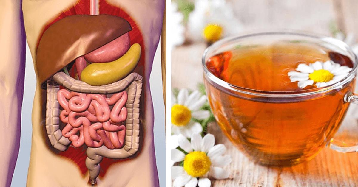 صور المشروبات المفيدة للقولون , اهم المشروبات الطبيعية لتهدئة القولون