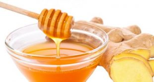صور فوائد الزنجبيل والعسل , اهمية تناول الزنجبيل مع العسل الابيض