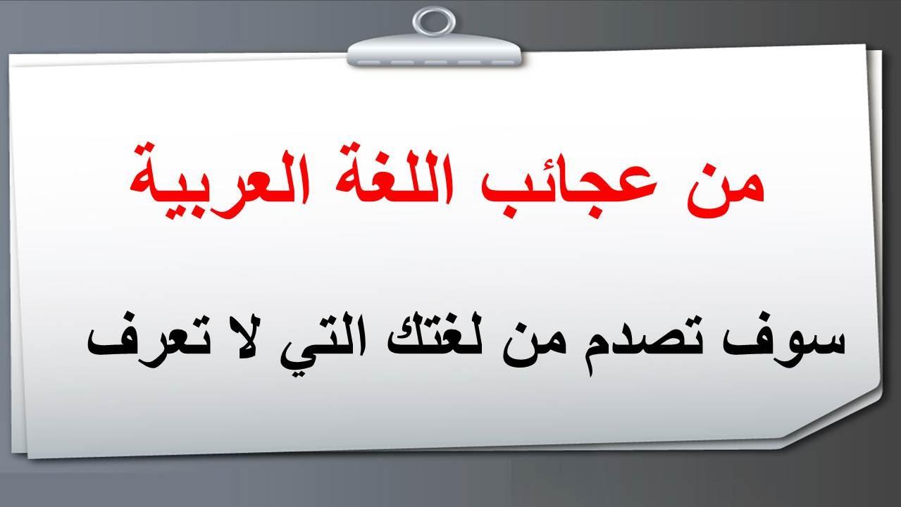 صور عجائب اللغة العربية , من اهم عجائب اللغة العربية