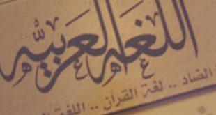 صورة اقصر كلمة في اللغة العربية , استفيد واعرف اقصر كلمة بالعربية