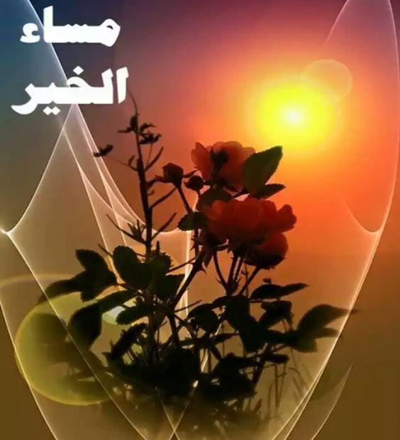 صورة اجمل الصور مساء الخير فيس بوك , تحية المساء الي كل الاصدقاء 4526 3