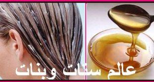 صورة وصفات لعلاج الشعر الجاف , وصفات طبيعية لعلاج الشعر الجاف