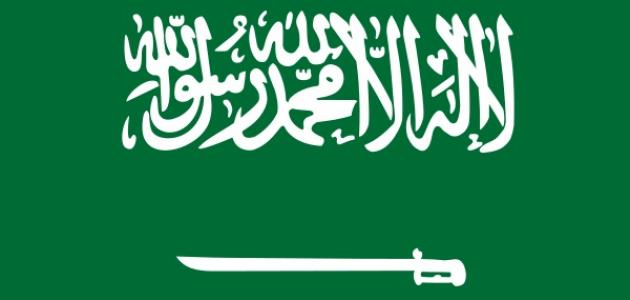 صورة معلومات عن السعودية , معلومات عامة عن السعودية 1393 2