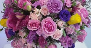 صور اجمل بوكيه ورد طبيعي , جمال الورد الطبيعي باحلى بوكيهات