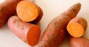 صورة وصفات اكل للاطفال , هريسة البطاطا اللذيذة لاطفالك