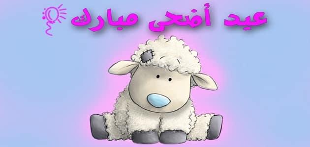 صورة موضوع تعبير عن العيد , العيد كله جديد في جديد