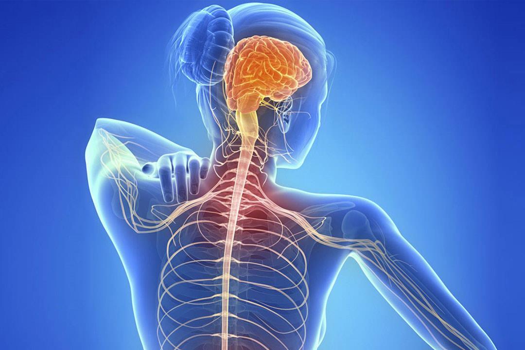 صورة اعراض امراض الاعصاب , اسباب وعلاج التهاب الاعصاب