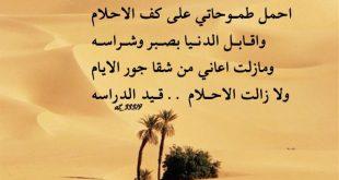 صورة ابيات قصيد مدح , صور اشعار عن المدح