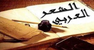 صورة من انواع الشعر العربي , معلومات عن الاشعار في اللغة العربية
