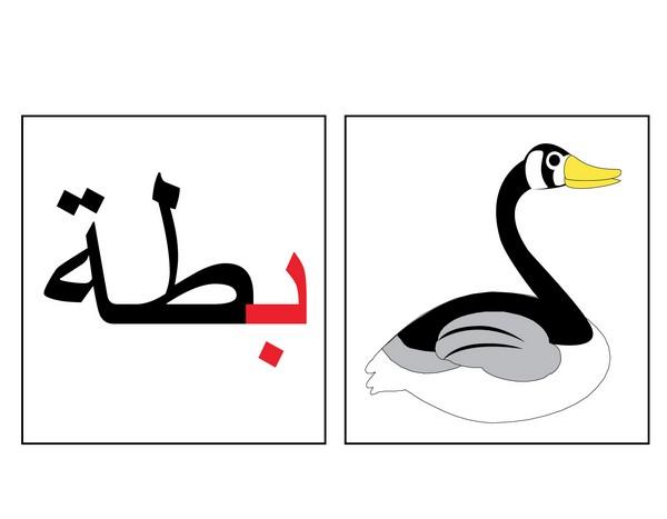 صورة كلمات تنتهي بحرف ه , احلى الكلمات التي تنتهي بحرف الهاء