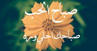 صورة رمزيات صباحيه حب , صور حب في الصباح جديد