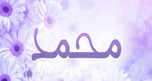 صورة اسماء اولاد عربية اسلامية , اسماء اولاد اسلامية جميلة