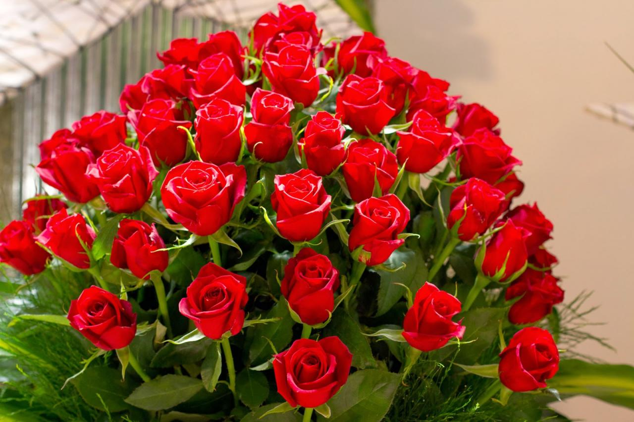 صورة صور ورود تحفة , شوف اروع الورود هنا