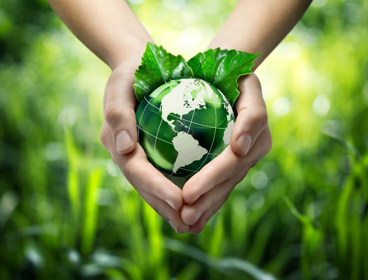 صورة صور عن البيئة , تعرف علي ملامح البيئة 10389 4