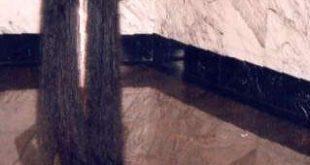 صورة صور اطول شعر , زينة وتاج المراة شعرها