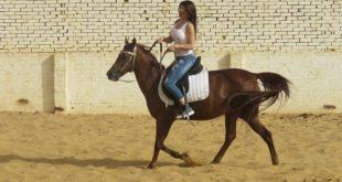 صورة صور بنات على حصان , لركوب الخيل متعة نفقدها