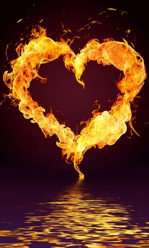 صورة صور قلوب خطيرة , القلب رمز للمشاعر والاحاسيس