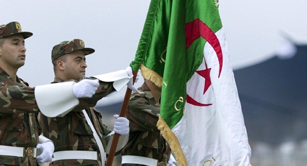 صورة صور علم الجزائر , ضحوا عشانك يابلد الشهداء