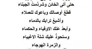 صورة رسالة عن الوطن , كلمات من القلب للوطن العزيز 894 12 310x165